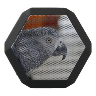 Majestic African Grey Parrot Black Bluetooth Speaker