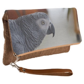 Majestic African Grey Parrot Clutch