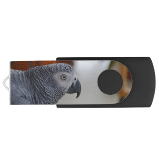Majestic African Grey Parrot Flash Drive