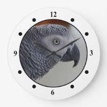 Majestic African Grey Parrot Large Clock