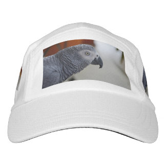 Majestic African Grey Parrot Headsweats Hat