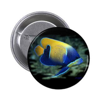 Majestic Angel Fish 2 Inch Round Button