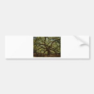 Majestic Angel Oak Bumper Stickers