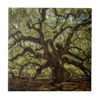 Majestic Angel Oak Ceramic Tile
