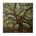 Majestic Angel Oak Tiles