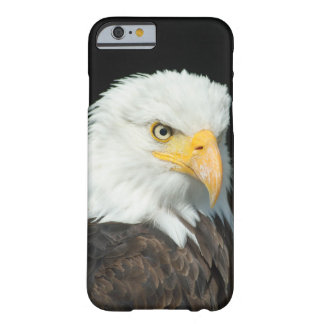 Majestic Bald Eagle Portrait Barely There iPhone 6 Case
