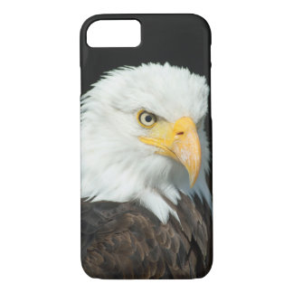 Majestic Bald Eagle Portrait iPhone 8/7 Case