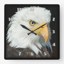 Majestic Bald Eagle Portrait Square Wall Clock