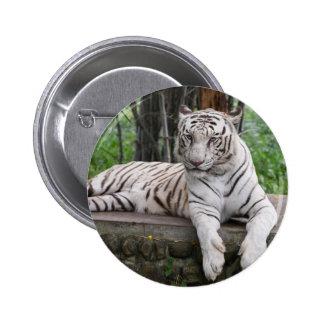 Majestic Bengal white Tiger Pinback Button