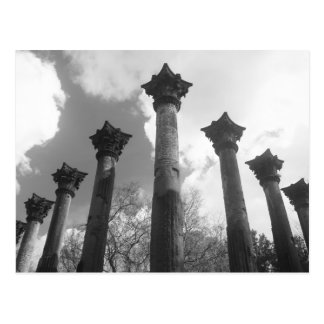Majestic Columns of Windsor Ruins - Port Gibson MS Postcard