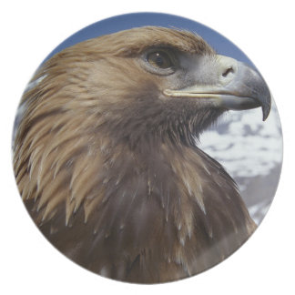 Majestic Eagle Collector Plate