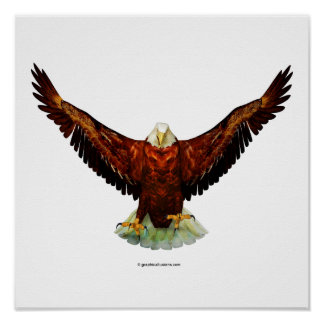 Majestic Eagle Poster