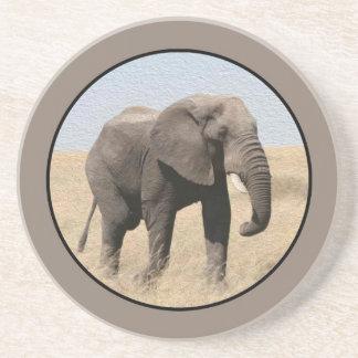 Majestic Elephant Coaster