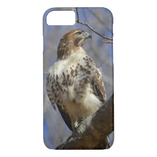 Majestic Hawk iPhone 7 Case