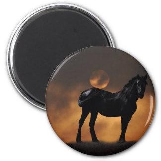 Majestic horse magnet