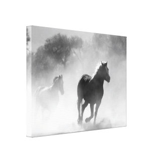 Majestic Horse Photo   Wrapped Canvas Picture