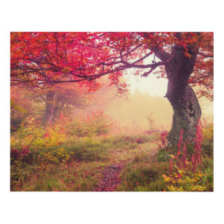 Majestic Landscape With Autumn Trees In Forest Panel Wall Art