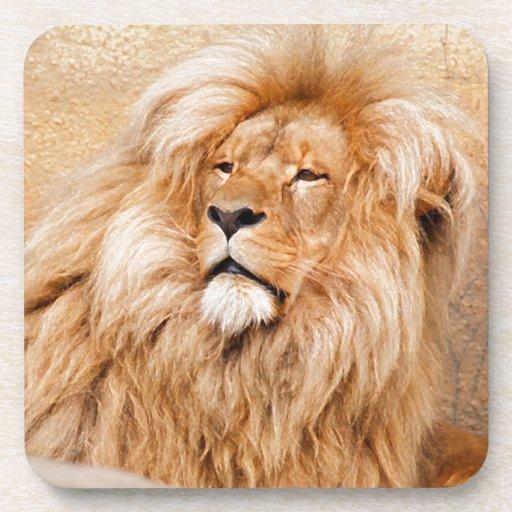Majestic Lion Beverage Coaster