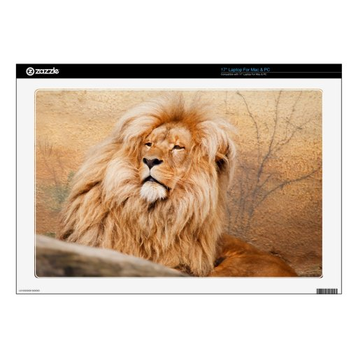 Majestic Lion Decal For Laptop