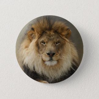 MAJESTIC LION GIFTS PINBACK BUTTON