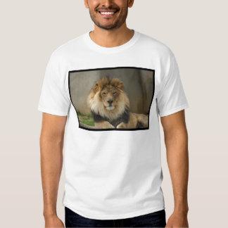 MAJESTIC LION GIFTS TEE SHIRT