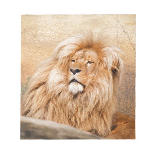 Majestic Lion Note Pads