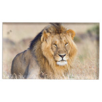 Majestic lion table card holder