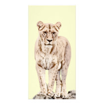 Majestic Lioness Card