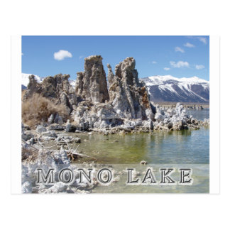Majestic Mono Lake Postcard