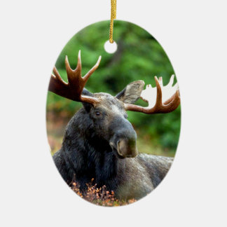 Majestic Moose Meadow Double-Sided Oval Ceramic Christmas Ornament