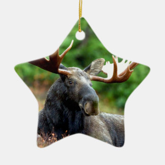 Majestic Moose Meadow Double-Sided Star Ceramic Christmas Ornament