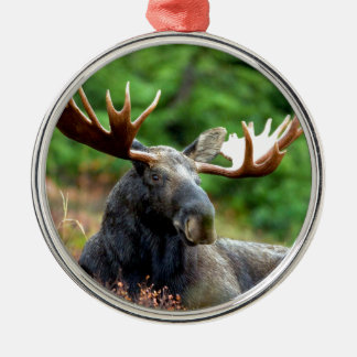 Majestic Moose Meadow Round Metal Christmas Ornament