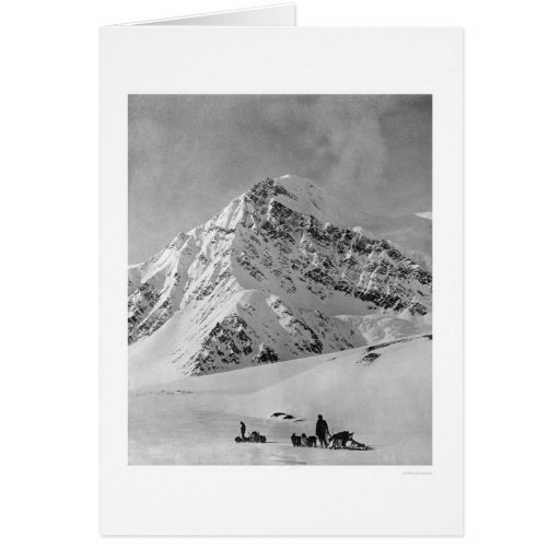 Majestic Mt. McKinley 1908 Greeting Cards