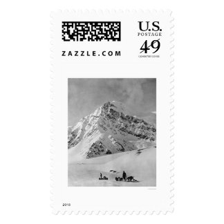 Majestic Mt. McKinley 1908 Stamp