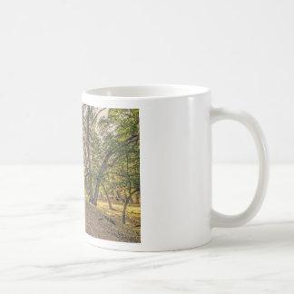 Majestic Oaks of The Whitney Canyon Trail Coffee Mug