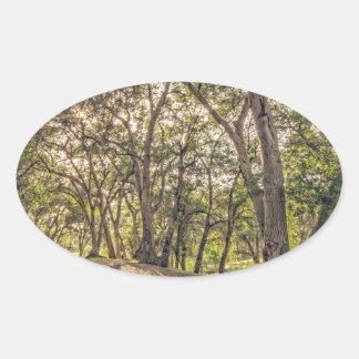 Majestic Oaks of The Whitney Canyon Trail Oval Sticker