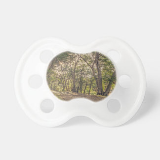 Majestic Oaks of The Whitney Canyon Trail Pacifiers
