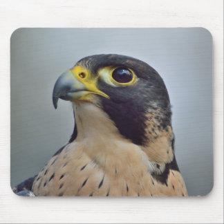 Majestic Peregrine falcon Mouse Pad