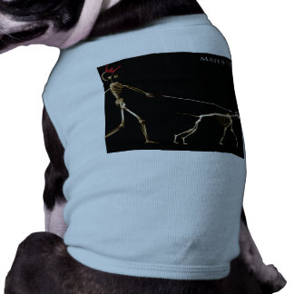 Majestic PET T-Shirt