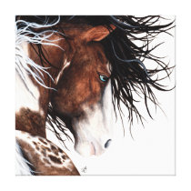 Majestic Pintaloosa Pony Canvas Print Art -Bihrle
