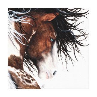 Majestic Pintaloosa Pony Canvas Print Art -Bihrle