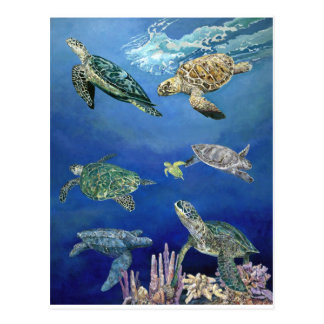 Majestic Sea Turtles Postcard