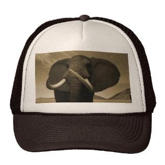 Majestic Stature Trucker Hat