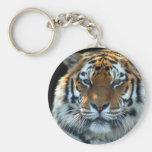 Majestic Sumatran Tiger Basic Round Button Keychain