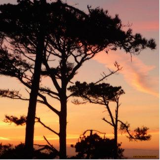 Majestic Timeless Sunset Acrylic Cut Outs