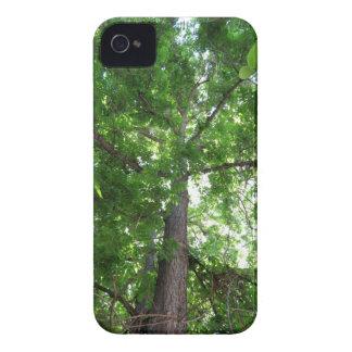 Majestic Tree iPhone 4 Case-Mate Case