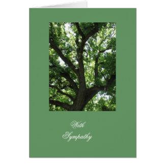 Majestic Tree Sympathy Greeting Card