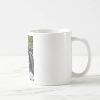 Majestic Waterfall - Gooseberry Falls by the Trees Classic White Coffee Mug