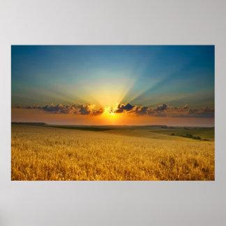 Majestic Wheat fields View poster