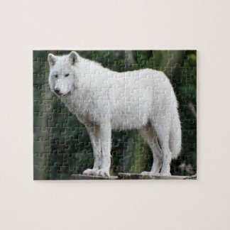 Majestic White Wolf Watching Over Domain Jigsaw Puzzle